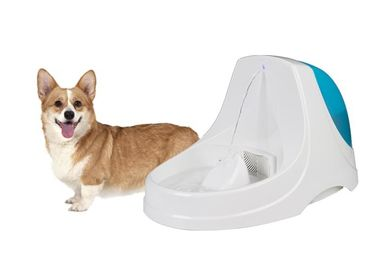Healthy Hygienic Automatic Dog Water Fountain Eco Friendly ABS Resin